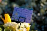 Dedica ad una vittima della Bloody Sunday